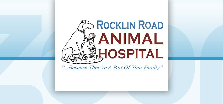 Rocklin Road Animal Hospital, Celebrate 38 years!